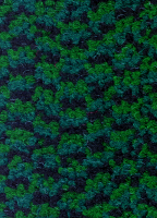 Грязезащитный ковер Wom Plus 2314 60х85 см