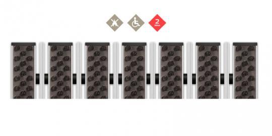 Грязезащитная алюминиевая решетка СТРИТ ПРЕМИУМ Щетка + Скребок